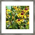 Garden Flowers In Yellow Framed Print