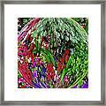 Garden Orb Framed Print