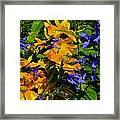 Garden Splash Framed Print