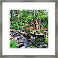 Garden Waterfall And Pond Framed Print