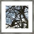 Geese In Twlight Sky Framed Print