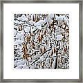 Gentle Snow Fall Framed Print