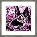 German Shepard In Purples Framed Print
