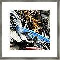 Gifts From Nature Framed Print