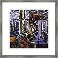 Giraffe Carousel Ride Framed Print