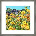 Glorious Yellow And The Franklin Framed Print