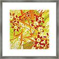 Glory Of The Snow - Lime Green And Orange Framed Print