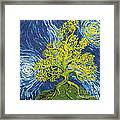 Glowing In The Balance Framed Print