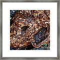 Gnarly Roots  Framed Print