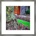 Gnarly Tree With Flowers Framed Print