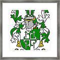 Gogarty Coat Of Arms Irish Framed Print