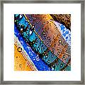 Gold Jay Feathers Framed Print