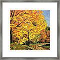Golden Autumn Colors Framed Print