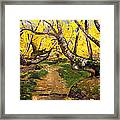Golden Autumn - Drenova Framed Print