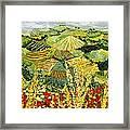 Golden Hedge Framed Print