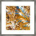 Golden Steel Swirl Framed Print