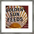 Golden Sun Feeds Framed Print