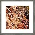 Gorge Trail Wall Framed Print