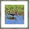 Gorgeous Glossy Framed Print
