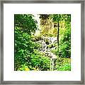 Gorman Falls Framed Print