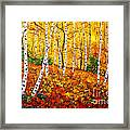 Graceful Birch Trees Framed Print