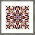 Graffito Kaleidoscope 40 Framed Print