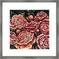 Grandma Lights Peonies Framed Print