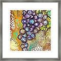 Grapes In The Vineyard  Framed Print