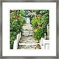 Greek Steps Framed Print