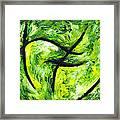 Green Apple Framed Print by Kamil Swiatek