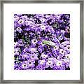 Green Bee Tiny Pollinator Framed Print