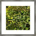 Green Gold Water Abstract. Feng Shui Framed Print by Jenny Rainbow