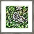 Grey Wolf Dreaming Framed Print