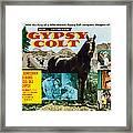 Gypsy Colt, Us Lobbycard, Center Framed Print