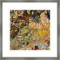 Hairy Hermit Crab Framed Print