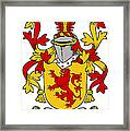 Hale Coat Of Arms Irish Framed Print