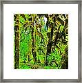 Hall Of Moss Framed Print by Benjamin Yeager