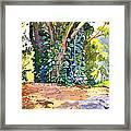 Hana Ivy/vine Tree Framed Print