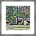 Hanging By The Pond Framed Print