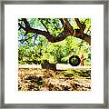 Happy Childhood Memories Framed Print