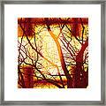Harmonious Colors - Sunset Framed Print