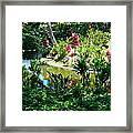 Hawaiian Cultural Garden Honolulu Airport Framed Print