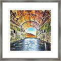 Hawk Hill Tunnel Framed Print