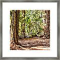 hd 379 hdr - Henry Cowell 2 Framed Print