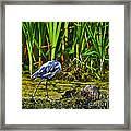 Headless Heron Framed Print