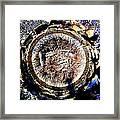 Heart Of Palm Framed Print