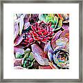 Hens And Chicks Series - Copper Tarnish  Framed Print