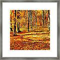 Here Comes Fall Framed Print