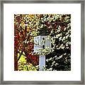 Hidden Bird House Framed Print