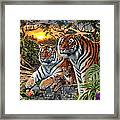 Hidden Images - Tigers Framed Print by Steve Read